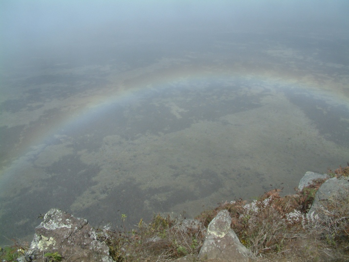 Cráter del Sierra Negra