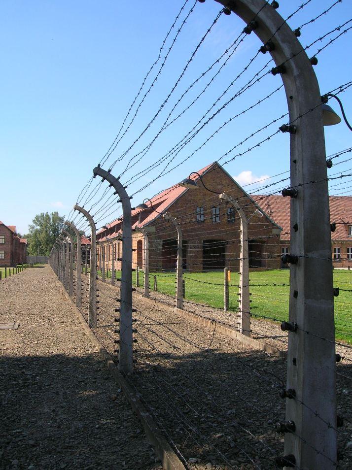 Las alambradas de Auschwitz I