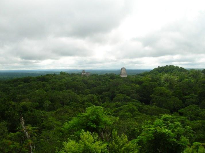 Un manto verde cubre Tikal. Vistas desde la cima del Templo IV