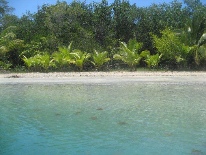 Bocas del Toro 089